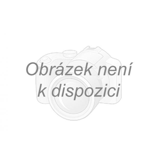 kozačky na jehlách Pleaser Seduce-3010 BPU - Velikost 37